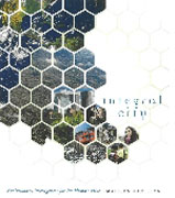 INTEGRAL CITY: MULTIPLYING INTELLIGENCES FOR THE HUMAN HIVE